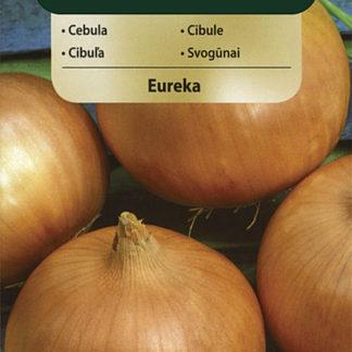 Cibule Eureka (Vilmorin)