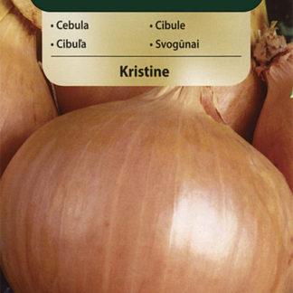 Cibule Kristine (Vilmorin)