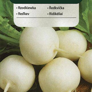 Ředkvička Alba - bílá (Vilmorin)