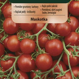 Rajče polní zakrslé Maskotka (Vilmorin)