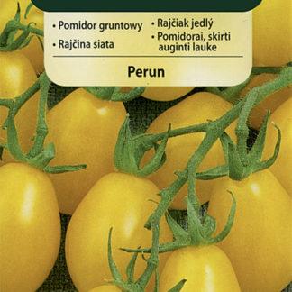Rajče polní Perun (Vilmorin)