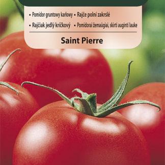 Rajče polní zakrslé Saint Pierre (Vilmorin)