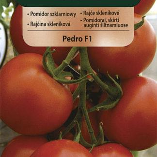Rajče skleníkové Pedro F1 (Vilmorin)
