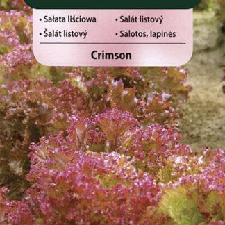 Salát listový Crimson (Vilmorin)
