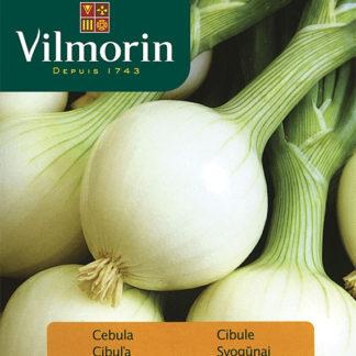 Cibule Elody (Vilmorin)