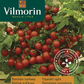 Trpasličí rajče Balkoni Red F1 (Vilmorin)