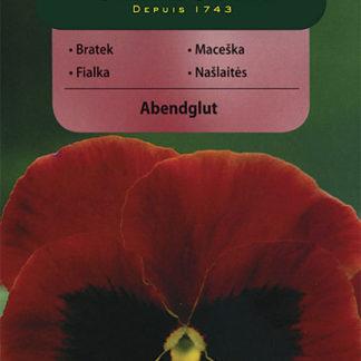 Maceška Abendglut - červená (Vilmorin)