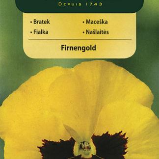 Maceška Firnengold - zlato-žlutá (Vilmorin)