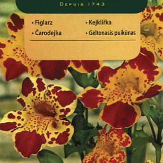 Kejklířka žlutá (Vilmorin)