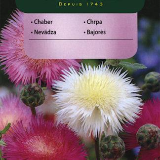 Chrpa císařská - směs (Vilmorin)