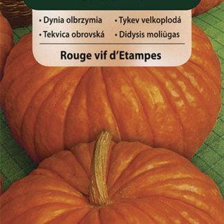 Tykev velkoplodá Rouge vif d'Etampes (Vilmorin)