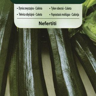 Cuketa (tykev obecná) Nefertiti (Vilmorin)