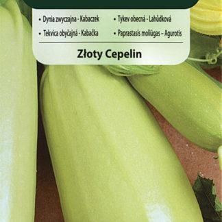 Tykev obecná (lahůdková) Zloty Cepelin (Vilmorin)