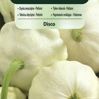 Patizon (tykev obecná) Disco (Vilmorin)