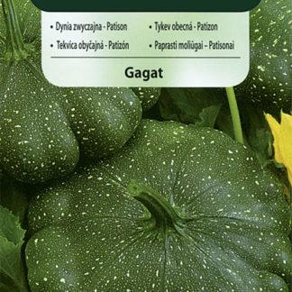 Patizon (tykev obecná) Gagat (Vilmorin)
