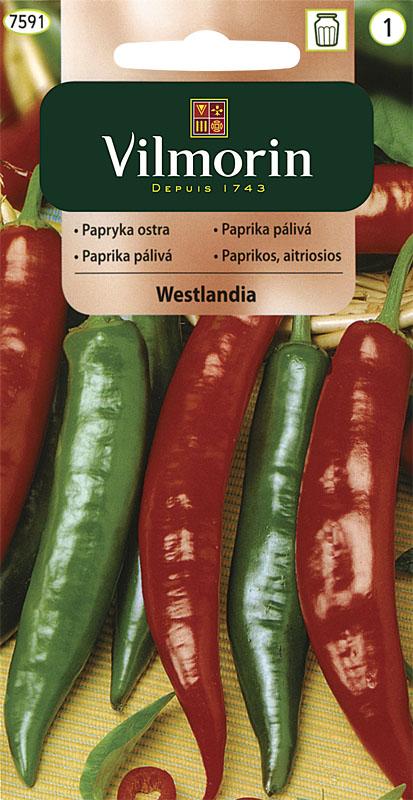 Paprika pálivá Westlandia (Vilmorin)