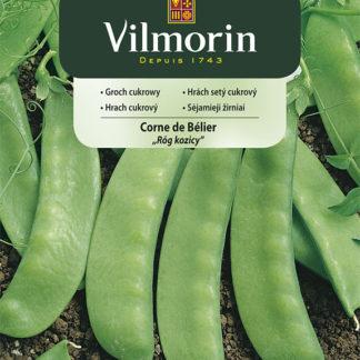 Hrách setý cukrový Corne de Bélier (Vilmorin)