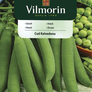Hrách Cud Kelvedonu (Vilmorin)