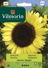 Slunečnice roční Lemon Queen