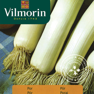 Pór Tenor (Vilmorin)