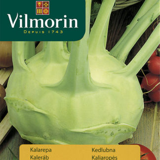 Kedlubna Gigant (Vilmorin)