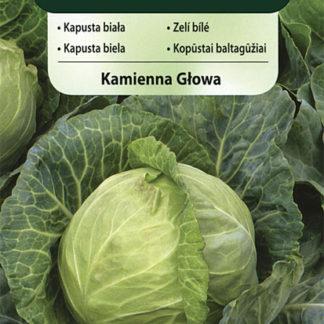 Zelí bílé Kamienna Glowa (Vilmorin)