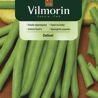 Fazol na lusky Delinel - zelený (Vilmorin)