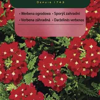 Sporýš zahradní - červený (Vilmorin)