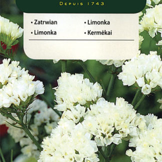 Limonka chobotnatá - bílá (Vilmorin)