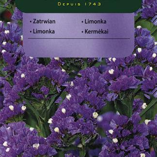Limonka chobotnatá Twilight - fialová (Vilmorin)
