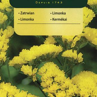 Limonka chobotnatá - žlutá (Vilmorin)
