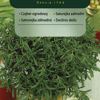 Saturejka zahradní (Vilmorin)