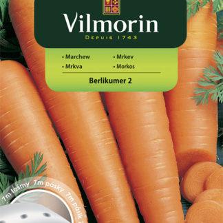 Mrkev Berlikumer 2 na výsevném pásku (Vilmorin)