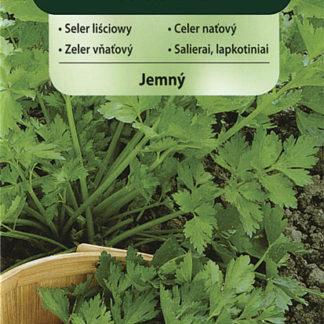 Celer naťový jemný (Vilmorin)