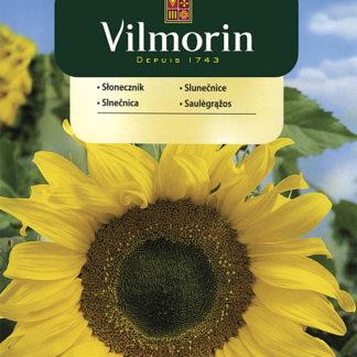 Slunečnice (Vilmorin)