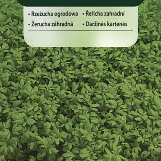 Řeřicha zahradní - setá (Vimorin)