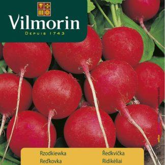 Ředkvička Falco - červená (Vilmorin)