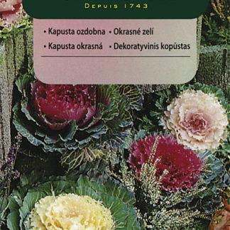 Okrasné zelí - směs (Vilmorin)