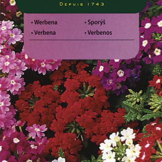Sporýš zahradní - směs (Vilmorin)