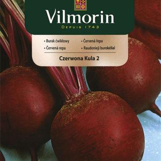 Červená řepa - Červená koule 2 (Vilmorin)