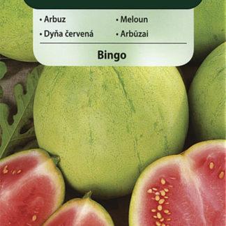 Meloun vodní Bingo (Vilmorin)
