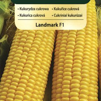 Kukuřice cukrová Landmark F1 (Vilmorin)