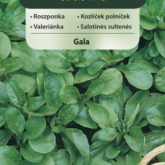 Kozlíček polníček Gala (Vilmorin)