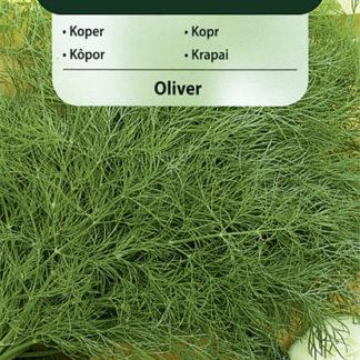 Kopr Oliver (Vilmorin)