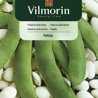 Fazol na suchá semena Felicja (Vilmorin)