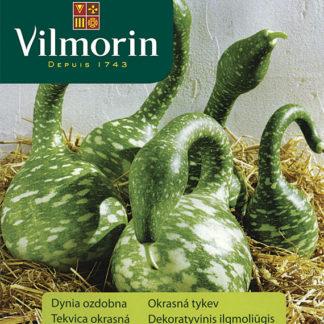 Okrasná tykev Cobra (Vilmorin)