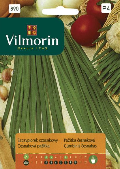 Pažitka česneková (Vilmorin)