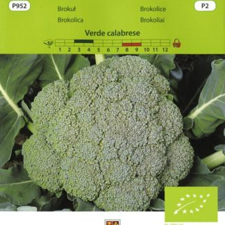 Brokolice Verde calabrese (Vilmorin)