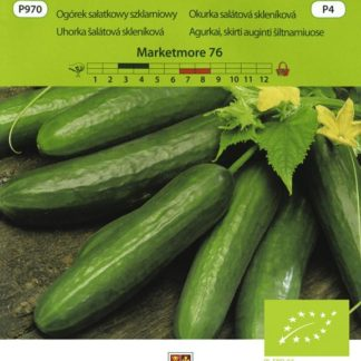 Okurka salátová skleníková Marketmore 76 BIO (Vilmorin)