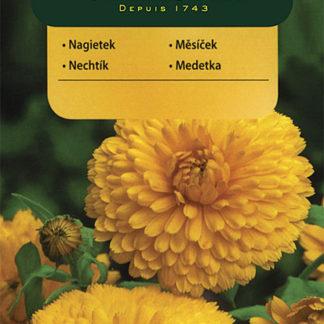 Měsíček lékařský - žlutý (Vilmorin)